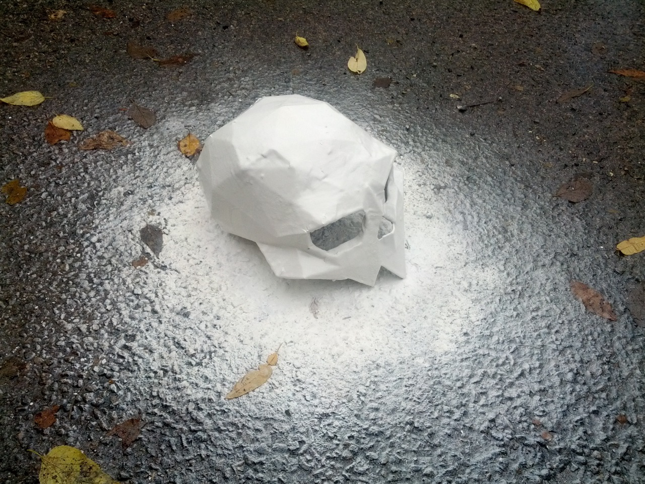 The skull sits on an asphalt surface, surrounded by wet leaves. The skull and surrounding pavement are all blasted white with spraypaint.